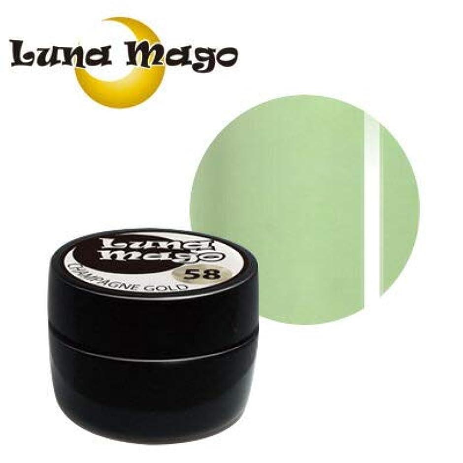 極地レンダー放送Luna Mago カラージェル 5g 037 グリーンティラテ