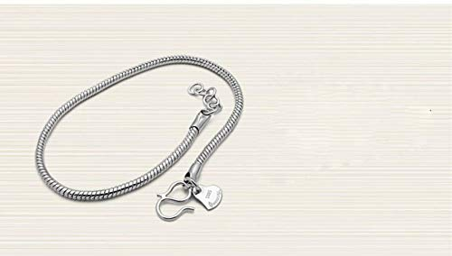 S&RL Pulsera Decorativa para Mujer, Pulsera de Serpiente Redonda para Hombre, Pulsera para Hombre Sencilla Y Versátil con Baño de Platino Cobre plateado con platino