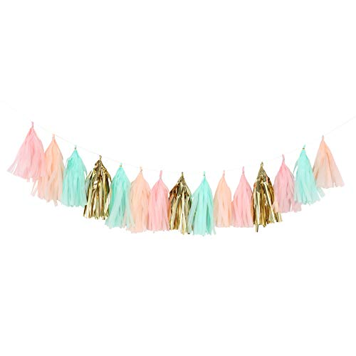 Fonder Mols Tissue Paper Tassels, Pastel Peach Pink Mint Green Tassel Garland, Baby Shower Decoration, First Birthday Party, Shabby Chic Wedding Photo Backdrop A28