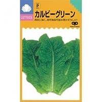 レタス・ちしゃ葉 種 カルビーグリーン 小袋(約1.6ml)