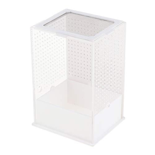 perfk Terrarium transparente Fütterungsbox Zuchtkasten für Reptilien und Insekten, 10,5 x 10,5 x 15 cm - Typ 1