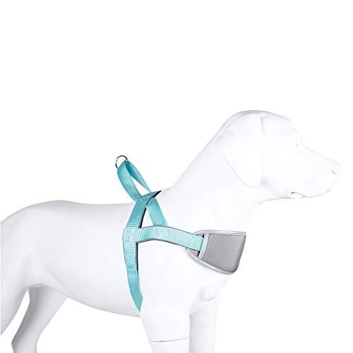 XDYFF Hundegeschirr Verstellbarer Hundebrustgeschirr Atmungsaktive Für mittelgroße bis große Hunde mit goldenen Retriever-Brustgurten mit Verschlussschnalle für große Hunde,Blue,XL