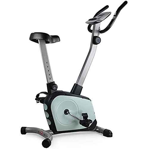 DJDLLZY Bicicletas de Ejercicio, Bicicleta de Spinning, Hogar Control magnético de Bicicleta estática Ultra silencioso Interior de Bicicletas de Ejercicio Deportes de Bicicletas (Color: Azul, tamaño: