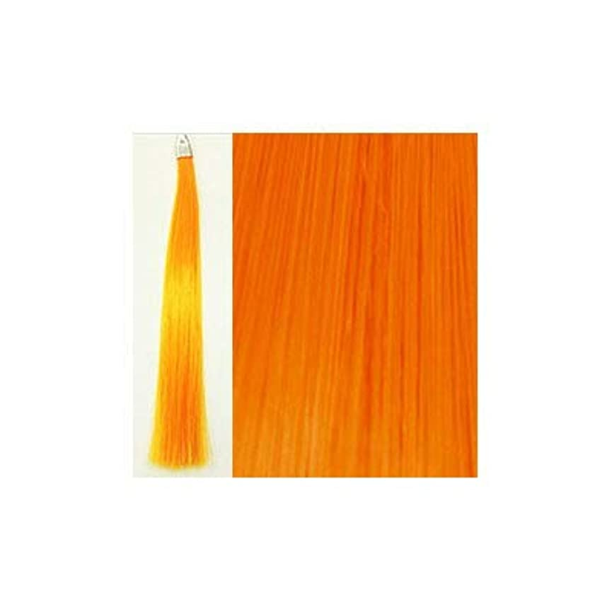 太陽飾り羽壮大なカミエク ヘアーエクステンション ライトオレンジ 6本毛