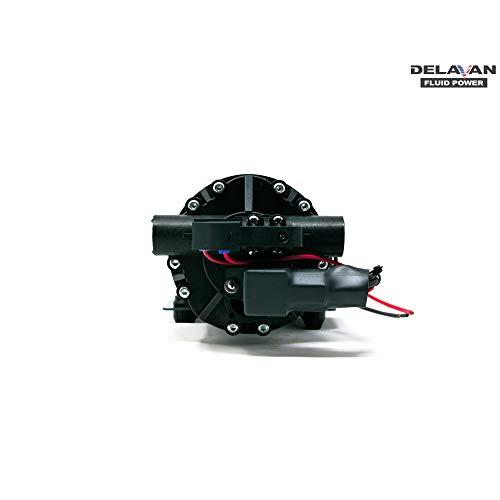Delavan 7870-101E-SB PowerFlo Electric 12 Volt 60 PSI 7 GPM On Demand Diaphragm Pump with 1/2 Inch NPT Ports