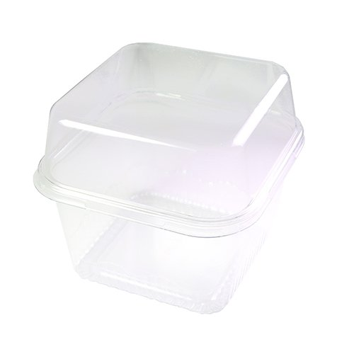 50/100 Food Safe Squared All Clear With Lid Pastry Container (100)