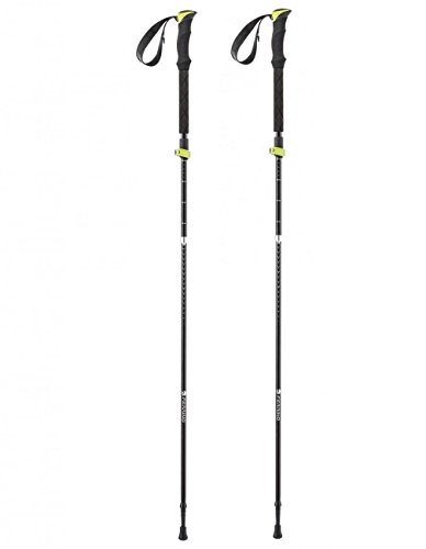 FERRINO Stick Spantik (Pair) Canne Camping et Randonnée Unisexe Adulte, Mixte, 78388FFF, Noir (Black), Taille Unique