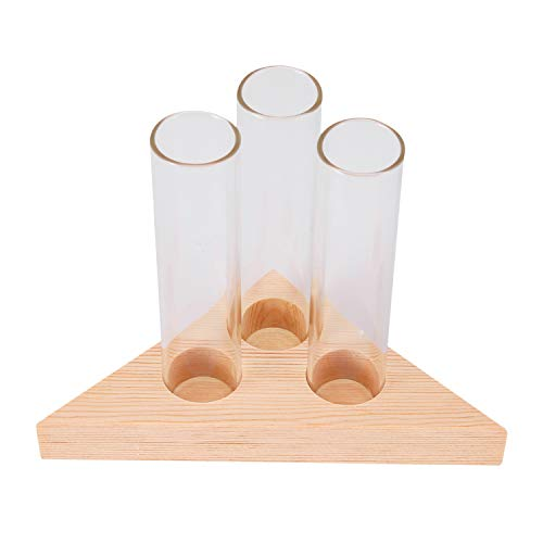 Exanko Florero Tubos De Vidrio Maceta De Vidrio Claro con Soporte De Madera para Envase Tubos De Ensayo De Plantas Hidropónicas Decoración De Mesa en Casa
