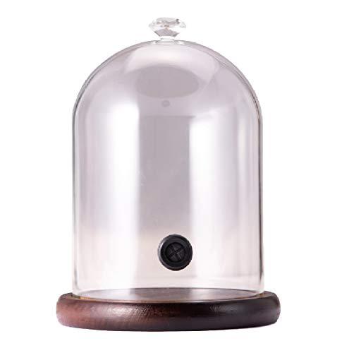 Cúpula de ahumado, cúpula de cristal Cloche, con base de madera, para ahumados, cócteles o exhibiciones