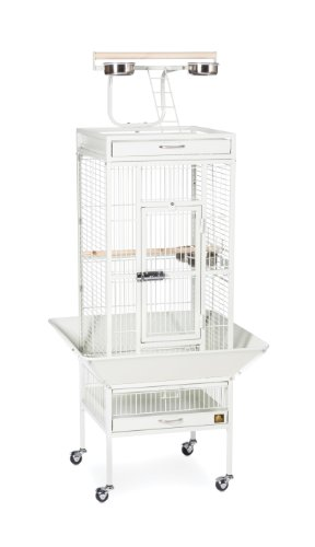 Prevue Hendryx 3151C Pet Products Wrought Iron Select Bird Cage, Chalk White,18'' x 18'' x 57''