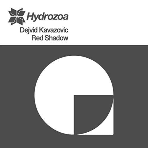 Dejvid Kavazovic