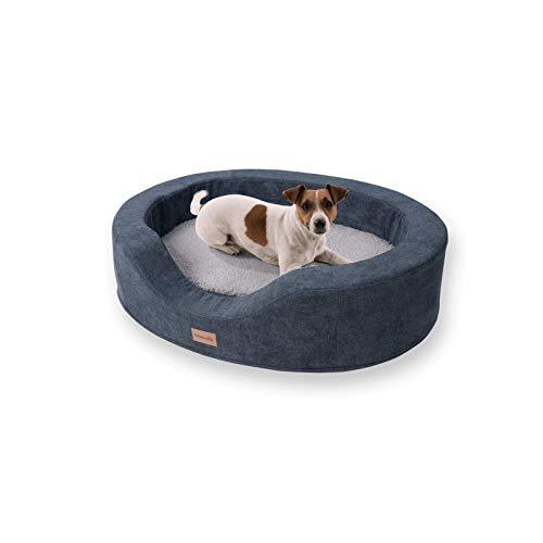 brunolie Lotte ovaler Hundekorb in Grau, waschbar, orthopädisch und rutschfest, kuscheliges Hundebett mit atmungsaktivem Memory-Schaum, Größe M 80 x 60 cm