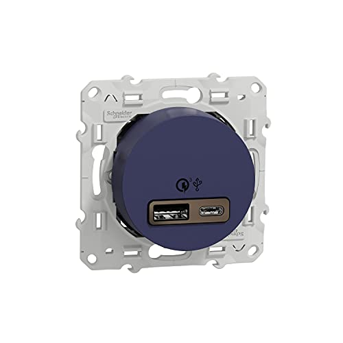 Schneider Electric S550219 Odace - Conector USB doble (carga rápida, tipo A+C, 18 W, 3,4A)