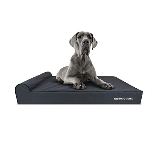 The Dog's Bed Orthopädisches Hundebett, XXL, Grau mit schwarzem Rand, wasserdichter Memory-Schaum