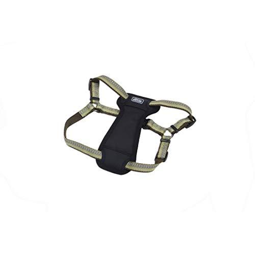 Coastal - K-9 Explorer - Reflective Adjustable Padded Dog Harness, Fern, 5/8' x 16'-24'