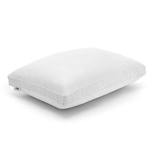 Sealy Down Down Alternative & Memory Foam Almohada, estándar, Color Blanco