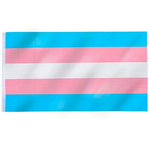 TRIXES Transgender-Pride Flagge - Große Flagge für drinnen und draußen - Feiern Sie die Vielfalt auf Bi Pride und LGBT Festivals Sommerparties - Rosa Lila Blau - 150 cm x 90 cm