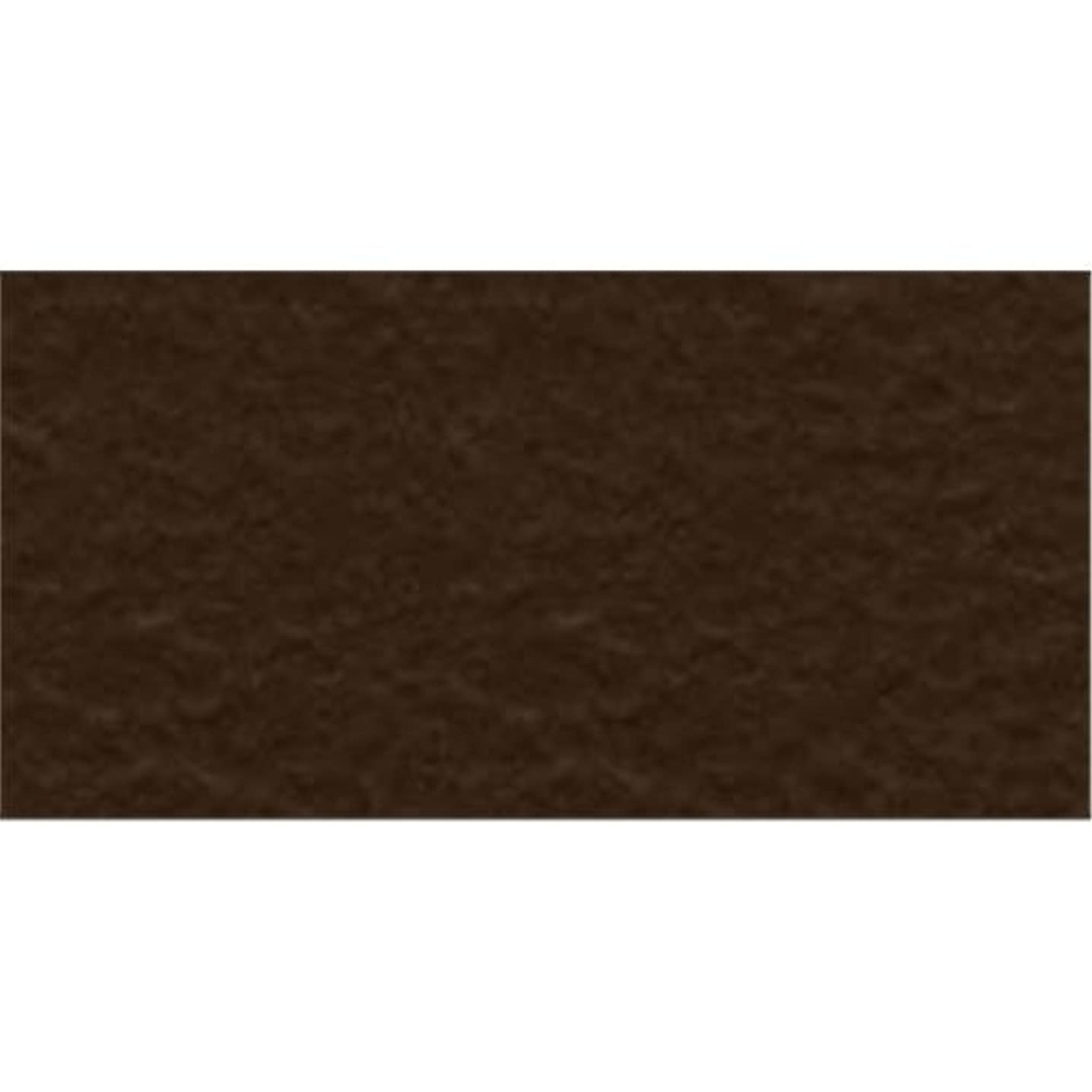 Bazzill Basics Paper 19-9309 Prismatic Cardstock, 25 Sheets, 8.5 by 11-Inch, Suede Brown Dark