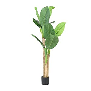 Worth Garden 5 Feet Artificial Banana Tree 59 inch. Fake Plant Tropical Palm Tree for Indoor Outdoor, Perfect Faux Silk Plants in Pot for Home Office Store Decoration – D418A00