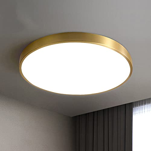 DEDVBJ LED Lámpara de Techo Moderno Ronda Luminaria Luz Ajustable Sencillo Oro Latón Acrílico Pantallas de lámparas Lámpara 26W Dormitorio Salón Habitación de Niños Oficina Balcón 40x4cm