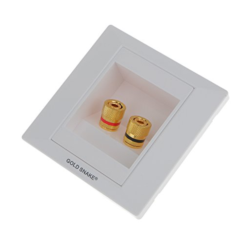 Sharplace 2 Buchsen Lautsprecherdose Lautsprecher Anschluss Wandsteckdose | mit vergoldeten Schraubklemmen, kompatibel mit Bananenstecker
