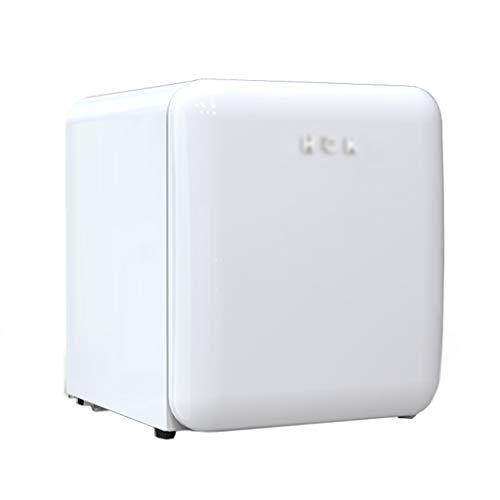 Frigoríficos mini Refrigerador De Belleza Profesional Refrigerador Pequeño para El Hogar Refrigerador Cosmético para El Cuidado De La Piel con Máscara Facial 42L De Gran Capacidad