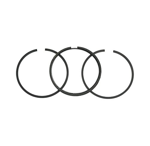 Briggs and Stratton 493261 - Juego de anillas de recambio estándar