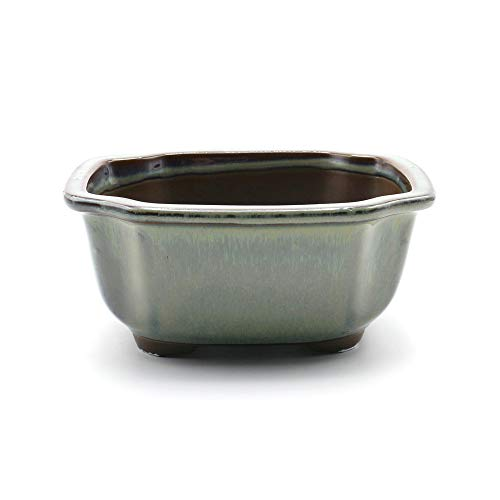 Bonsai Pot Ceramic Mokko (Quince) Shape Glazed (5.75', Oribe-Yu)