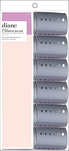 Diane Magnetic Roller, Grey 2 Inch, 12 Count