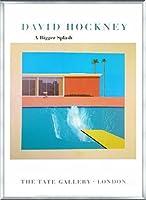 ポスター デビット ホックニー A Bigger Splash 1967 額装品 アルミ製ベーシックフレーム(シルバー)