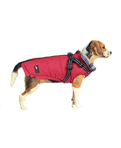 ASMPET Dog Jacket with Harness, Winter Warm Dog Vest, Waterproof Windproof Dog Apparel for Cold Weather, Red M (Chest:16.5