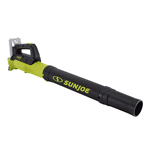 Sun Joe 24V-TB-LTE 24-Volt iON Cordless Compact Turbine Jet Blower, Kit (w/ 2.0-Ah Battery + Quick Charger)