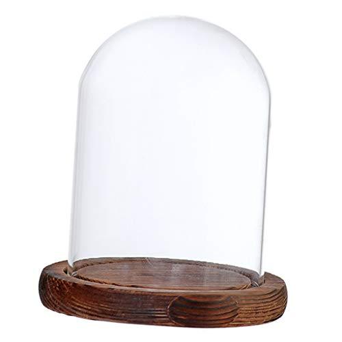 BBlesiya『透明ガラスドーム』