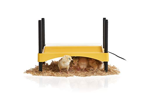 Brinsea - USHD500 EcoGlow Brooder for Chicks or Ducklings