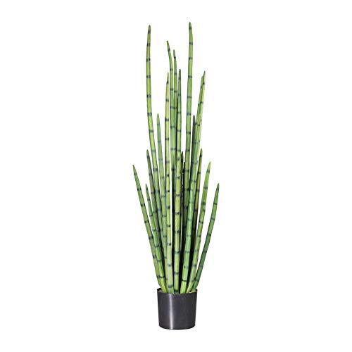 Pflanzen Kölle Sanseveria cylindrica Kunstpflanze grün, mit 27 Blattstielen, im Kunststofftopf, ca. 140 cm