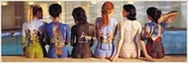 Pink Floyd - Door Music Poster (The Back Catalog) (Size: 62 inches x 21 inches)