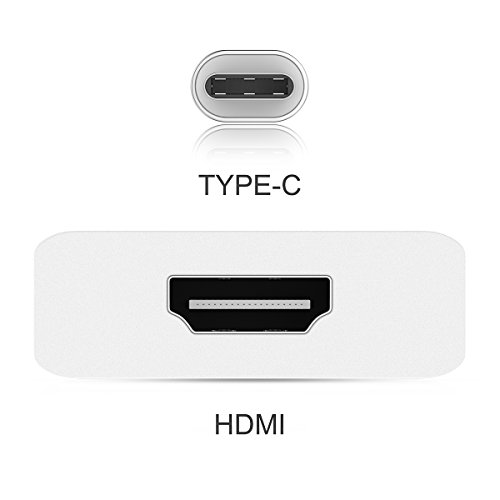 LENTION USB C to 4K HDMI Digital AV Adapter Compatible 2020-2016 MacBook Pro 13/15/16, New Mac Air/iPad Pro/Surface, Chromebook, Samsung S20/S10/S9/S8/Plus/Note 10/9/8, More (CB-4KHDMI, Silver)