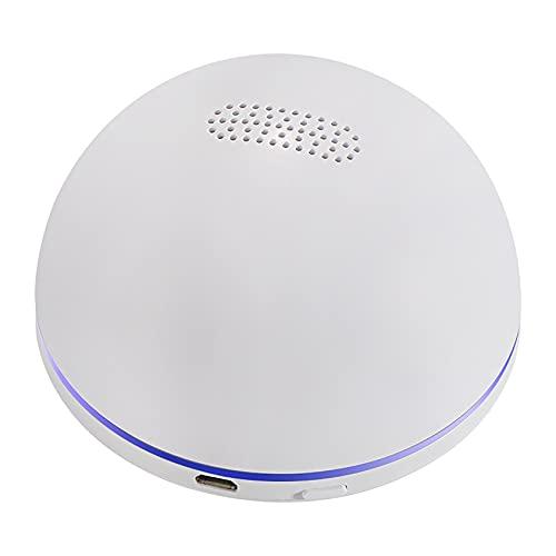 ADFHZB Purificador de Aire Refrigerador Neutralizador de olores Tratamiento de Aire Esterilización Conservación de Alimentos Desglose Residuos de plaguicidas Mini generador de ozono Desodorante