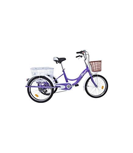 pequeño y compacto Riscko –Bep-14 Triciclo de 3 cestas para adulto |  Conjunto negro |  6 velocidades |  Ruedas de 20 pulgadas |…
