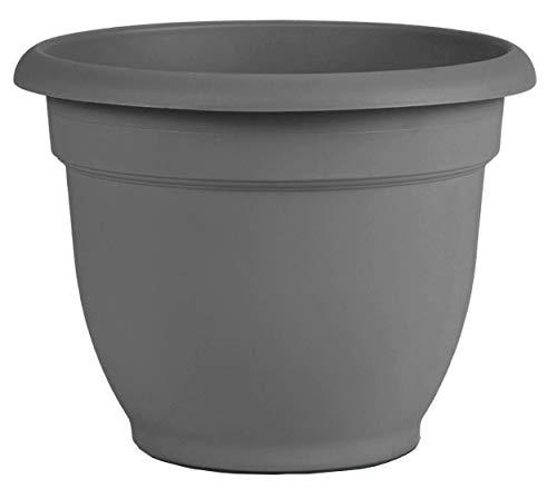 Bloem AP12908 Ariana Self Watering Planter 12', Charcoal Gray