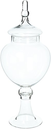 جرة زجاجية أنيقة واضحة مع غطاء -