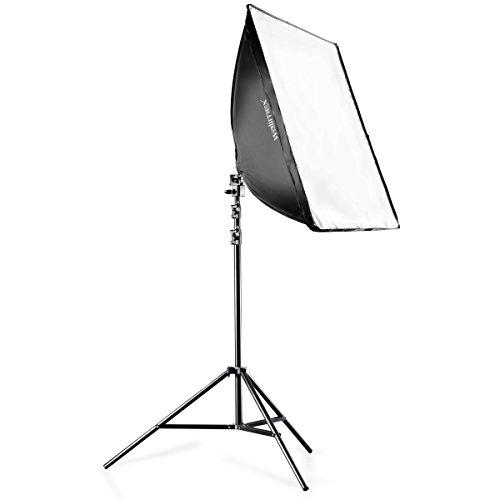 Walimex Daylight-Set 250 (inkl. 50 W Spirallampe, Softbox 40 x 60 cm, Frontdiffusor, Lampenstativ 260 cm, praktischer Transporttasche)
