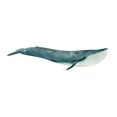 Schleich- Figurine Baleine Bleue Wild Life, 14806, Multicolore
