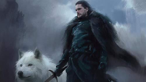 lcyab 1000 Teile Teenpuzzle Puzzle for Jugendliche Und Erwachsener,Game of Thrones Jon Snow Poster,Freizeit-Lernspielzeug