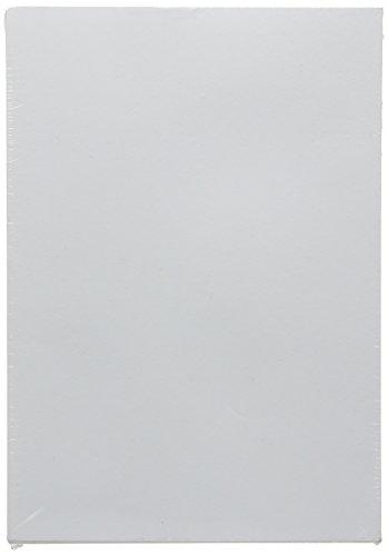 Clairefontaine 93735C Skizzenpapier (120 g, DIN A5, 14,8 x 21 cm, 250 Blatt, ideal für Künstler oder die Schule) weiß