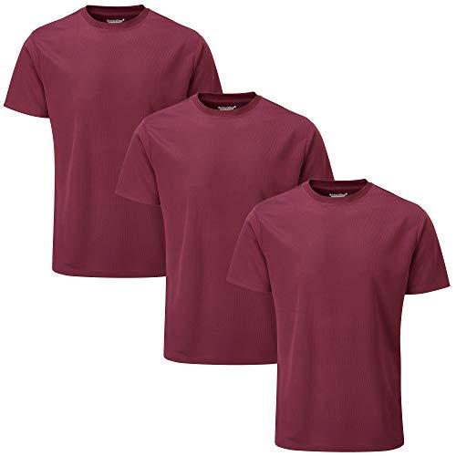 Charles Wilson 3er Packung Herren Kurzarm Sports Gym T-Shirt (L, Dark Port (0520))