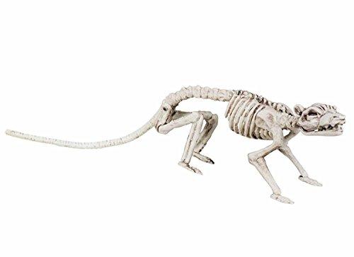 Boland 72155 - Dekoration Ratten-Skelett, Größe 35 cm, Weiß, Halloween-Deko, Mottoparty, Party, Karneval