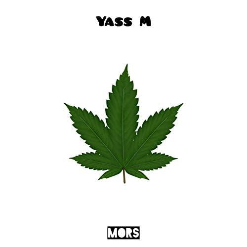 Yass M