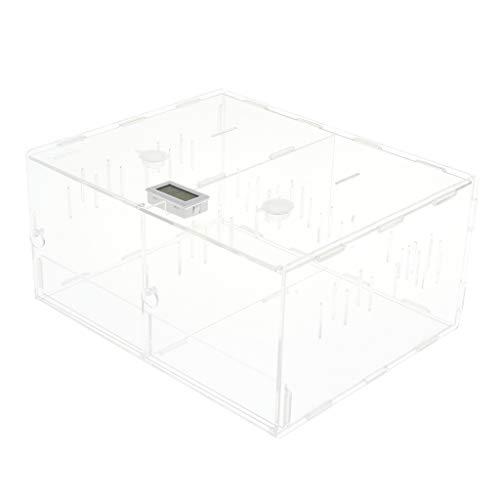 VANKOA Acryl Reptilien Mais Schlangen Terrarium Kasten Amphibien Transparenter Zuchtkasten - Doppel-Lagerhaus Box