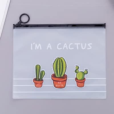 Astuccio Beibaobao Fresh Cactus Scrub Trasparente Borsa Cosmetica Custodia Per Trucco Da Viaggio Donna Make Up Organizer Custodia Per Articoli Da Toeletta Donna